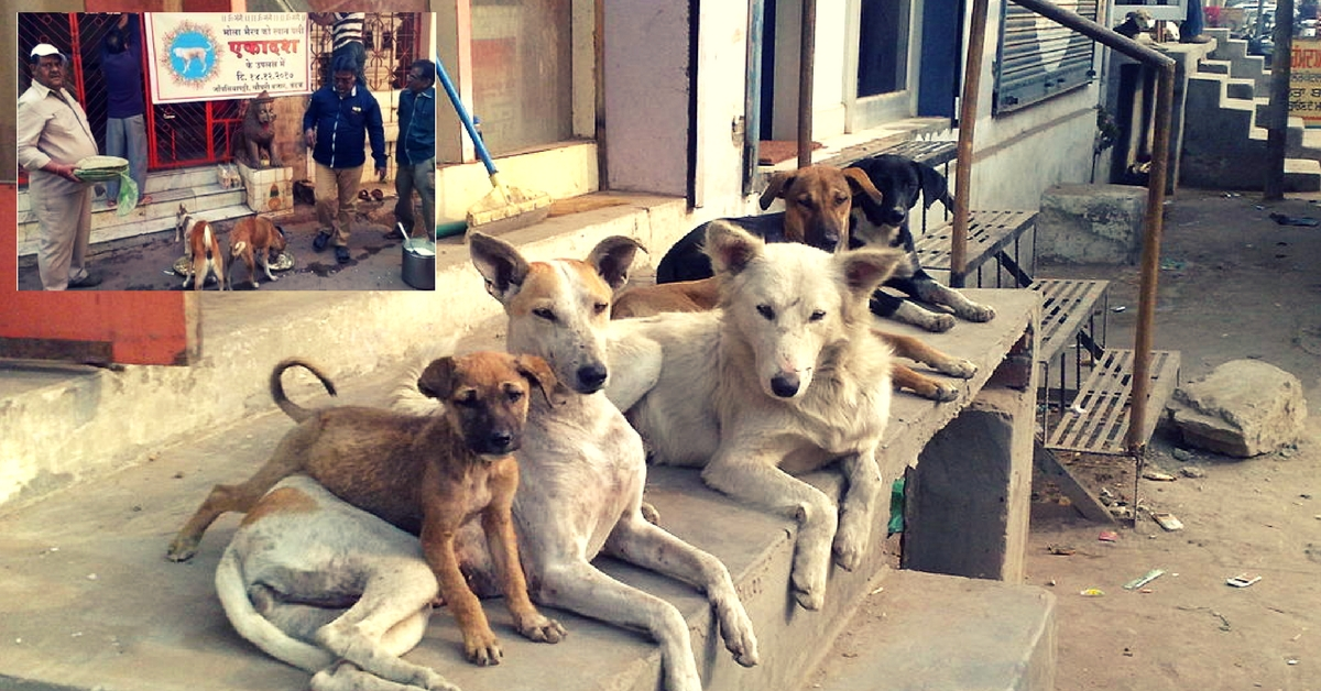 Cuttack Residents' Dignified Funeral for a Stray Dog Will Melt Your Heart!