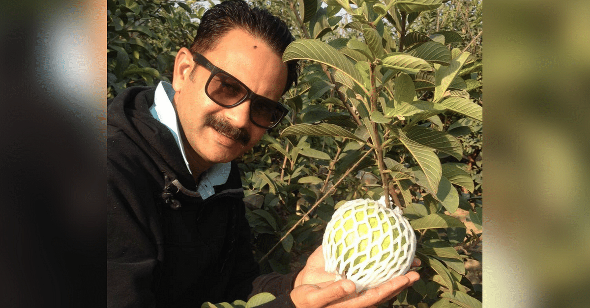 Software Engineer Quits Job to Bring Organic Jumbo Guavas to Our Homes