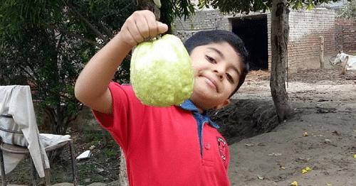 Software Engineer Neeraj Dhanda Quits Job to Bring Organic Jumbo