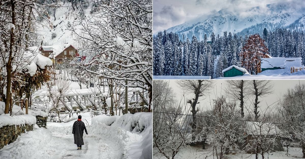 In Pics: First Snows Transform Kashmir Into a Mystical Wonderland, Have a Look!