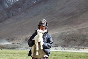 A girl from the Changpa community. (Source: Wikimedia Commons)