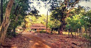 Shri Waghoba Mandir, in Ratnagiri District of Maharashtra.Image Courtesy: Wikimedia Commons.