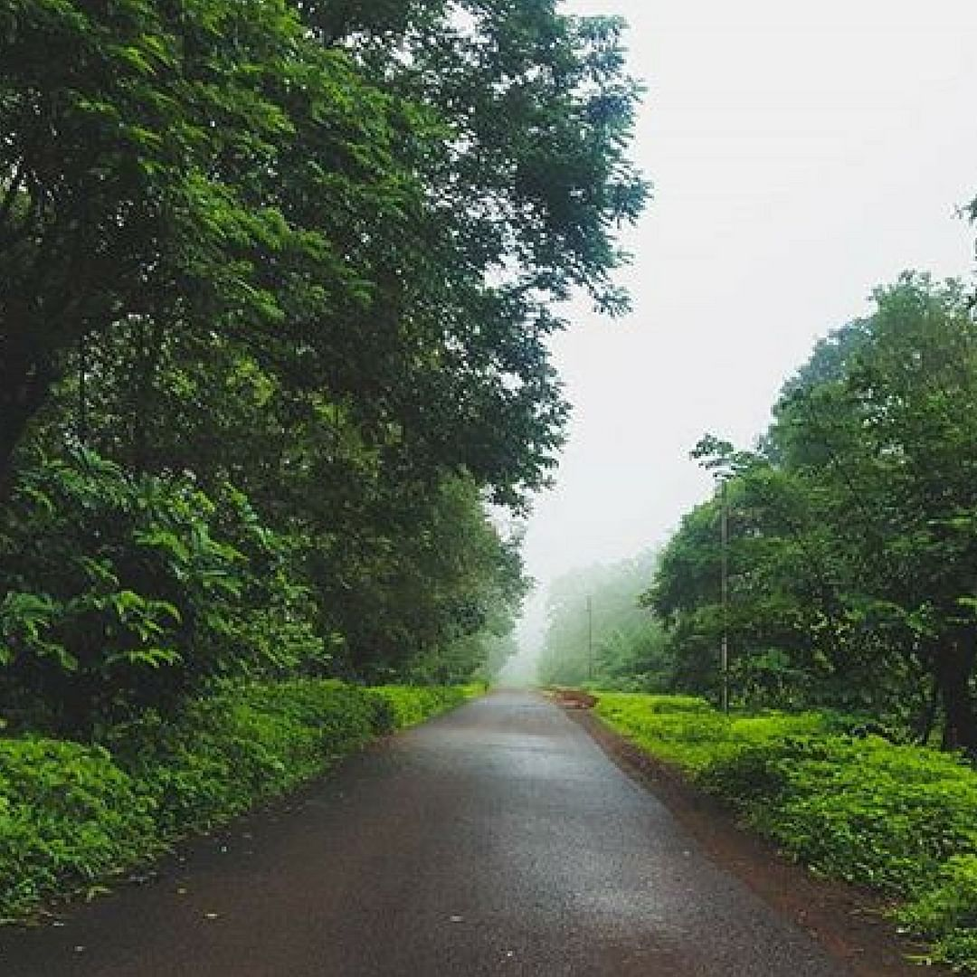 Sometimes, it makes sense to just follow the road, and see where it leads. India. Picture Courtesy: Instagram