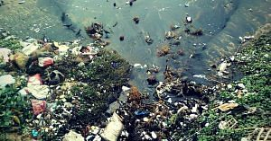 The amount of pollution in our ocean waters is alarming. Representative image only. Image Courtesy:Wikimedia Commons.