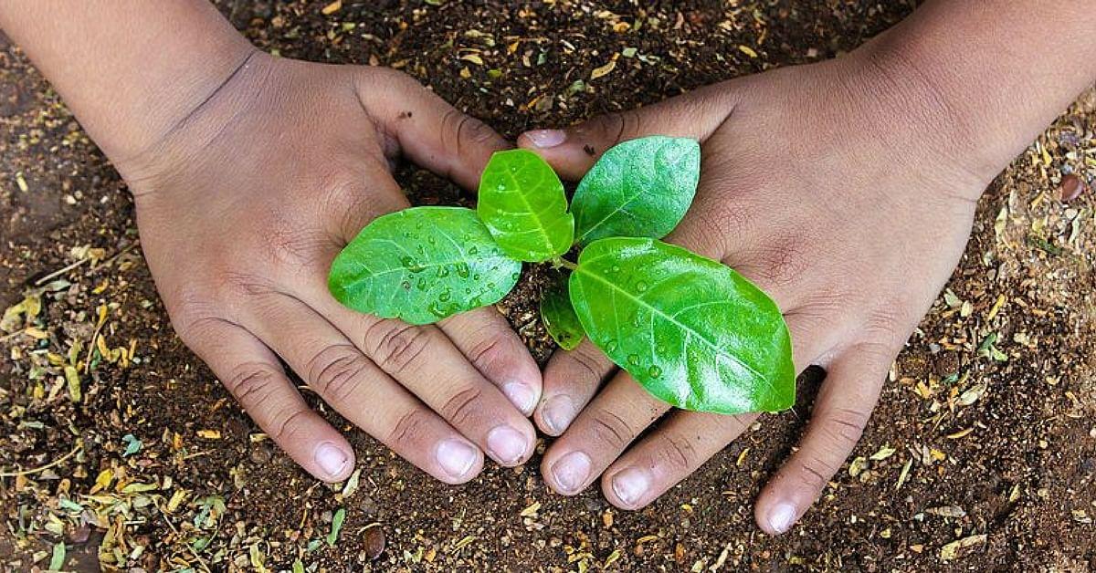 Kitchen Gardens All Set to Make Uttar Pradesh's Schools Green and Healthy