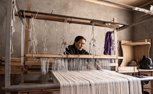 At a Looms of Ladakh production unit (Source: Looms of Ladakh)