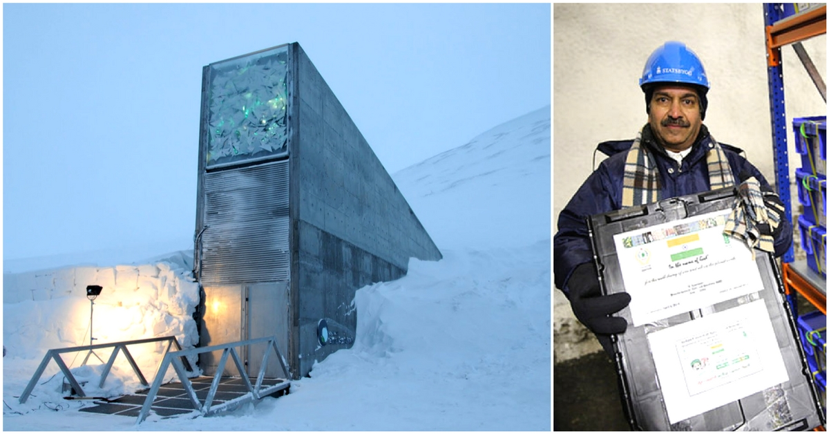 Freezing Future: Inside Chang La, India's Doomsday Vault In The Himalayas