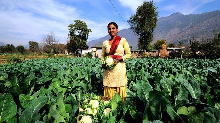 organic agriculture act Or organic agriculture act of 2010 the formulation of the irr was spearheaded by the national organic agriculture board (noab), after several series of consultations with various.