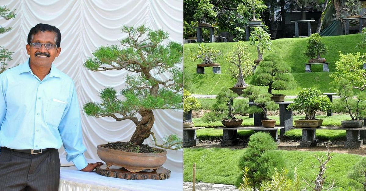 Kerala Man Left a Career in Law to Make South India's Biggest Bonsai Garden