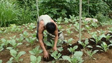 Uttarakhand is soon going to become a benchmark of organic farming.Representative image only. Image Courtesy: Flickr.