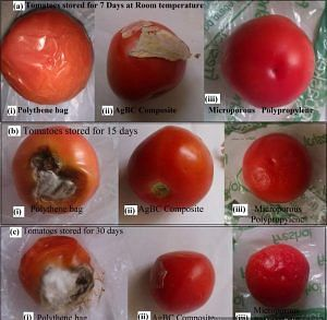 Veggies will be kept fresh tanks to these Indian Scientists innovation. The Image above shows the deterioration of tomatoes wrapped in different materials.