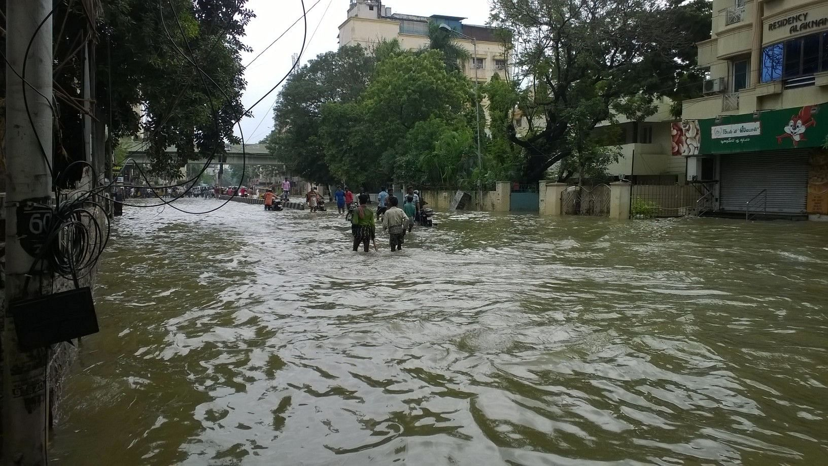 Flooding in Chennai. (Source: Wikimedia Commons)