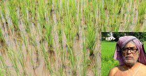 Mr Natabar Sarangi, the icon of organic farming to millions. Representative image only. Image Courtesy: Wikimedia Commons