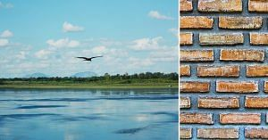 Benguluru engineers turn bellandur lake pollution into eco-friendly bricks
