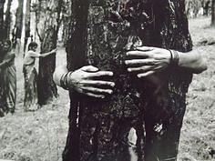Chipko Movement: Tree hugging. (Source: Wikimedia Commons)