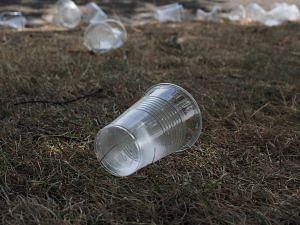 Maharashtra plastic ban
