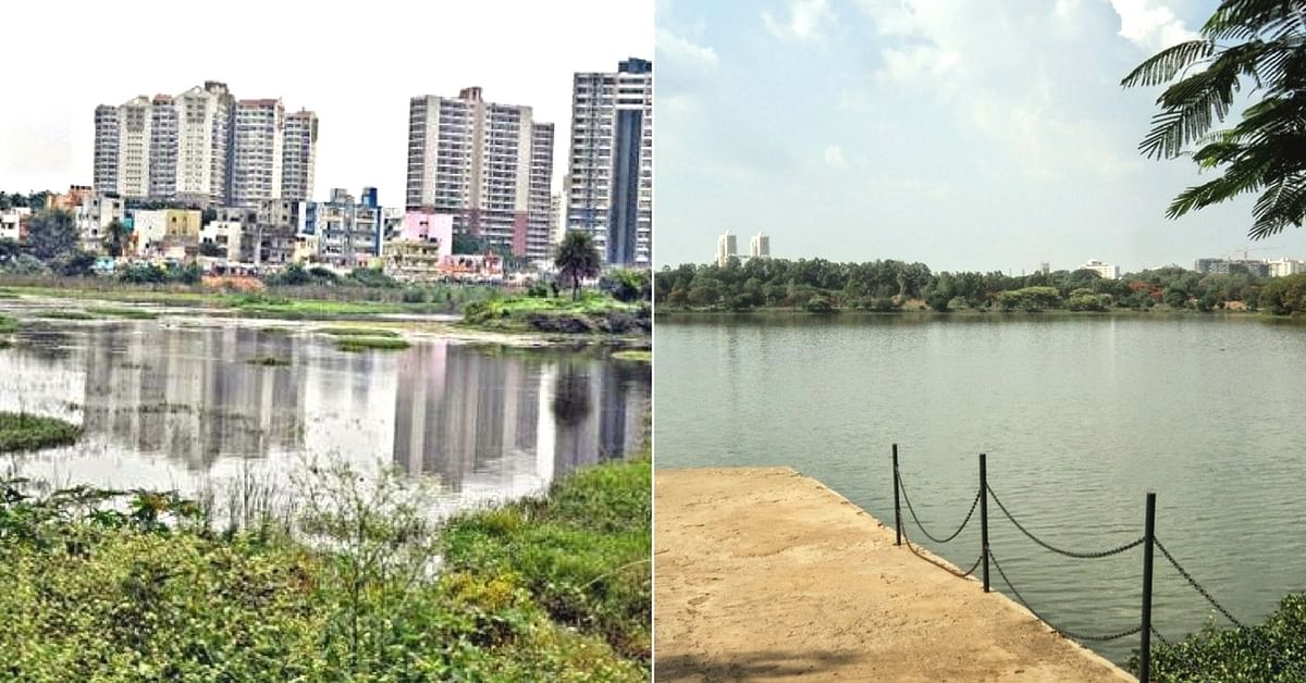 Sewage-Choked Hell to Natural Wonder: How I Helped Save a Bengaluru Lake