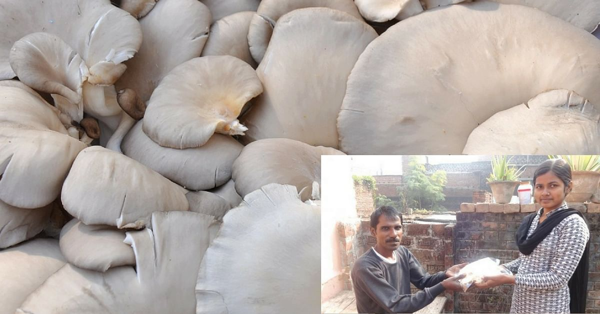 In Patna, Oyster Mushrooms Have Turned Teen Girls into Village Trendsetters