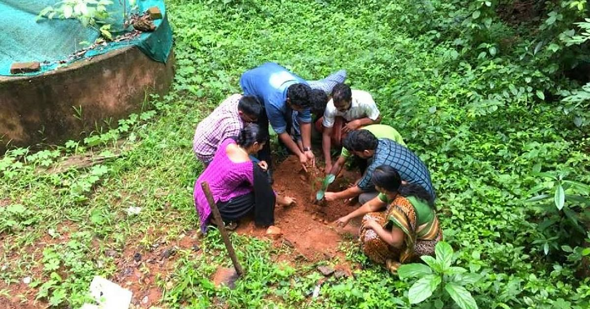 Kerala Sets Record-Busting Green Goals, To Plant 3 Crore Saplings This Year!