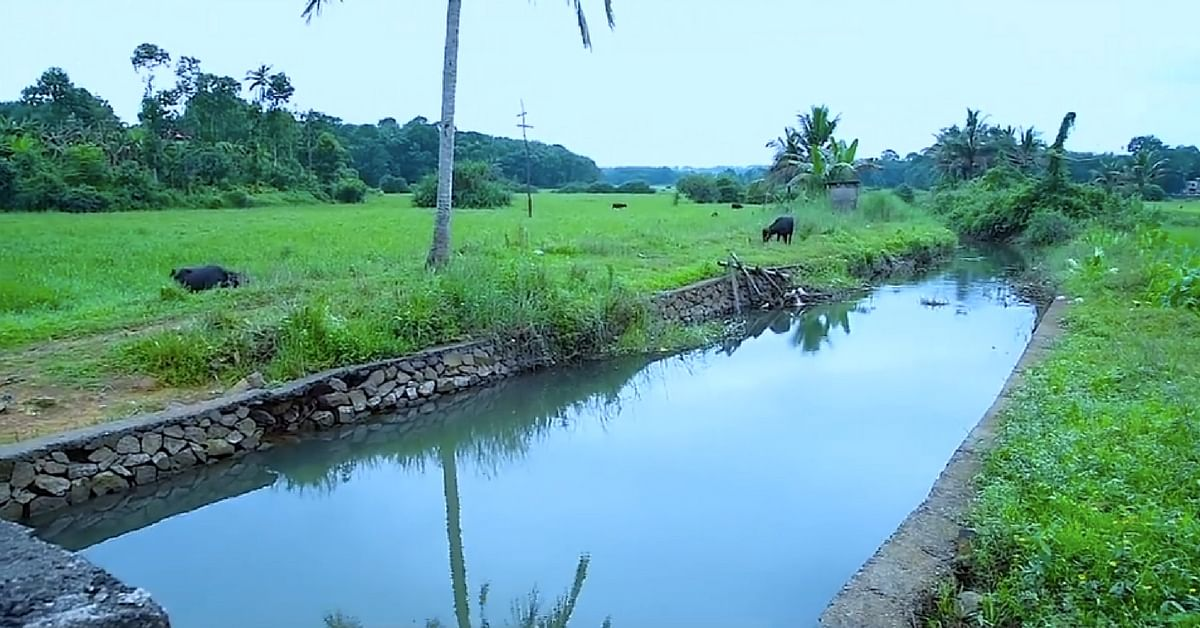This May, Kottayam Will Join Hands & Hearts to Revive Its Precious 'Lifelines'!