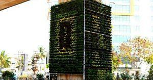 South Delhi flyovers vertical gardens