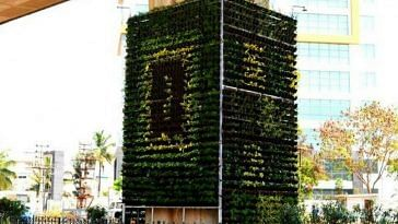 South Delhi flyovers vertical gardens