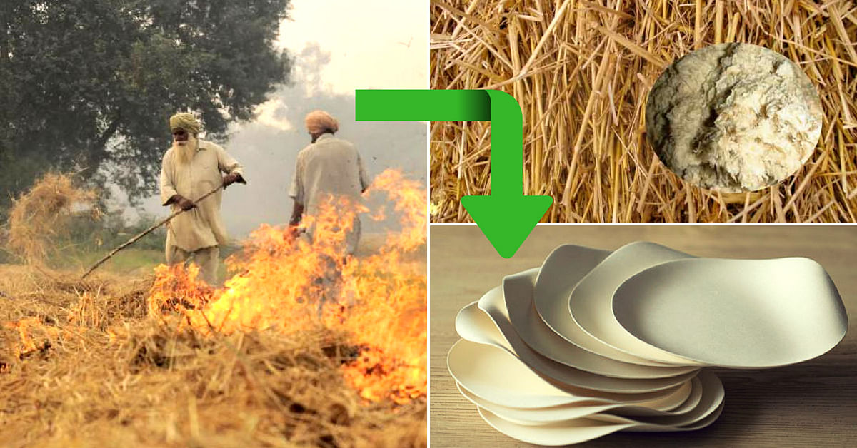 Biodegradable Paper from Paddy Straw? This Project By IIT Delhi Is Doing It!