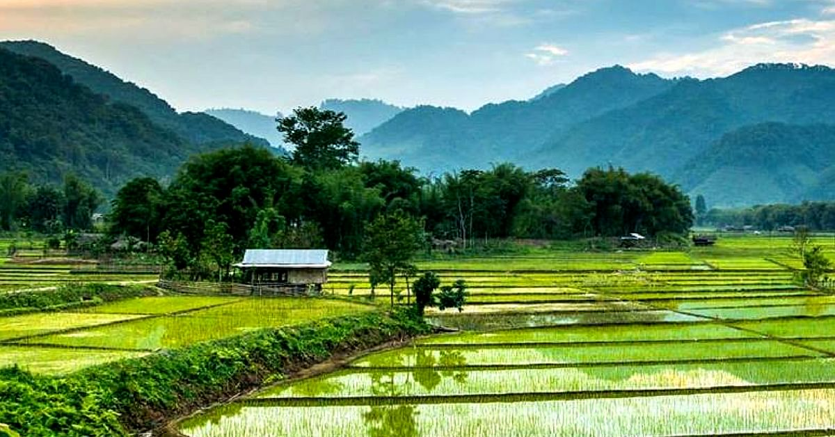 Beautiful paddy fields in Aalo, Arunachal Pradesh. Image Credit: Alex and Sebastiaan for Discover My India.