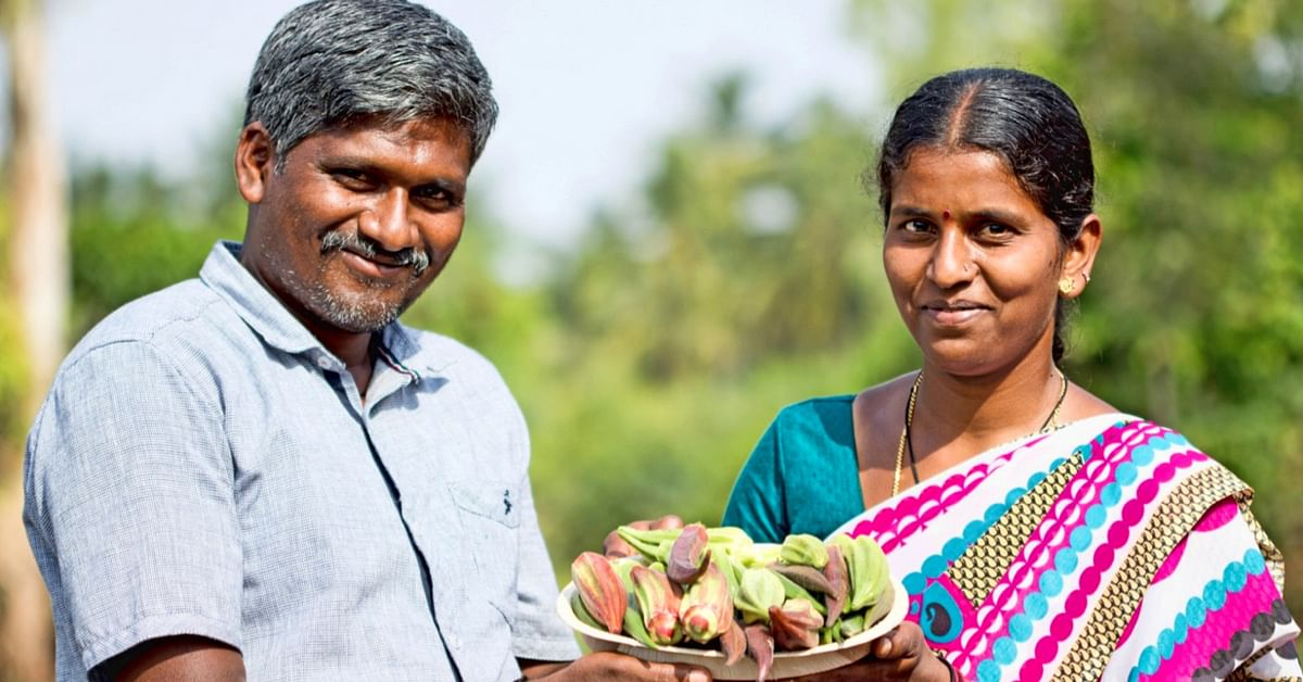 Once Tobacco Farmers, This Karnataka Couple Now Grows 15 Kinds of Ladies Finger