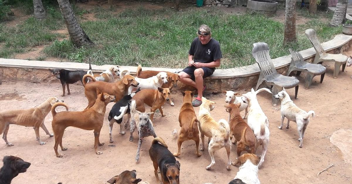 Once they reached Kerala, a turn of fate saw Steve and Mary stay back, and it has been a decade since. Image Credit: Street Dog Watch Association.