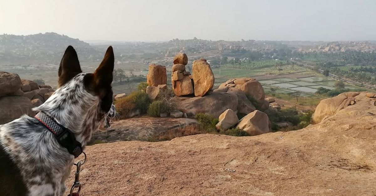Overlooking a beautiful rock formation, somewhere in Karnataka. Image Courtesy: Gowtham