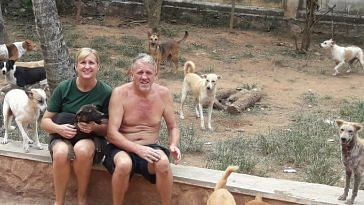 Steve and Mary, decided to settle in Kerala to take care of the dogs that stole their heart. Image Credit: Street Dog Watch.