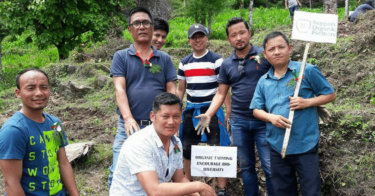 Sikkim IAS Officer Sets Example, Ploughs Field to Inspire Youth in Organic Farming!