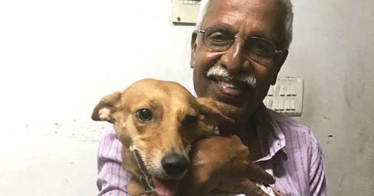 Remember the Dog Thrown from Roof? This 68 YO Travelled 500km to Hug Her!