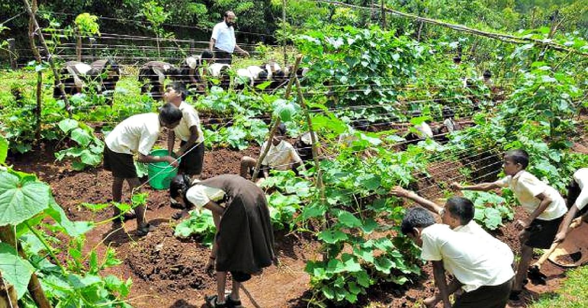 Govt School Makes ₹3-4 Lakh/Year from Farm, Funds Its Own Transformation!