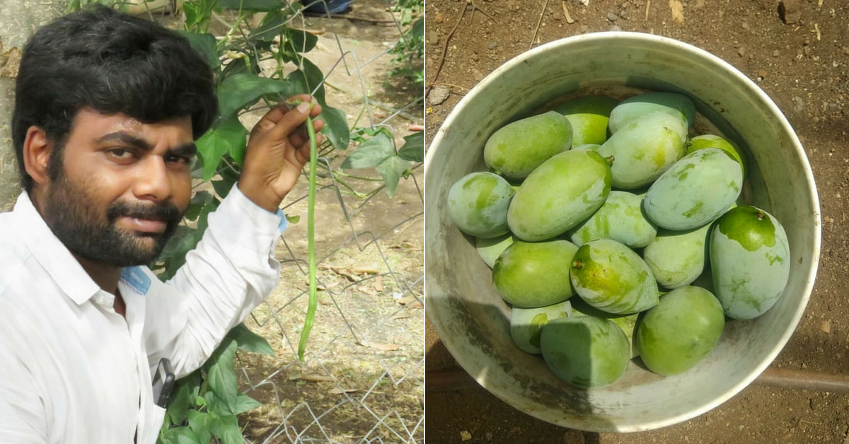Gujarat unique organic garden