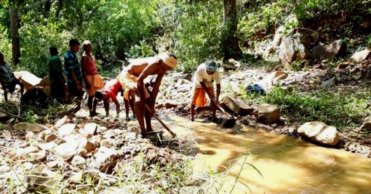 Odisha's Daitari Nayak could not afford to let the crops die.Image Credit: Tribal Stuff.