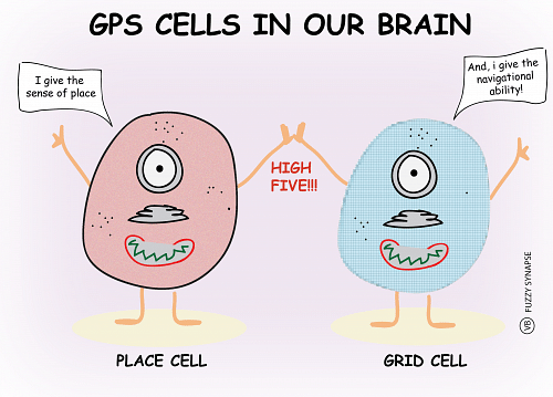 Place-and-grid-cells