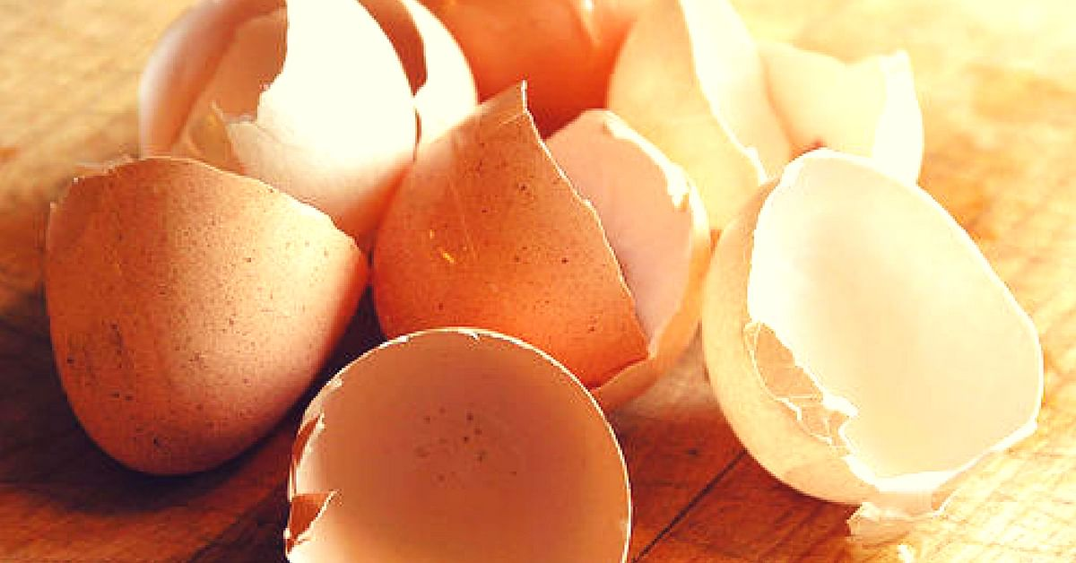 The humble eggshell, can become a source of power, claim researchers at IIT Kharagpur. Image Credit:- Phu Thinh Co