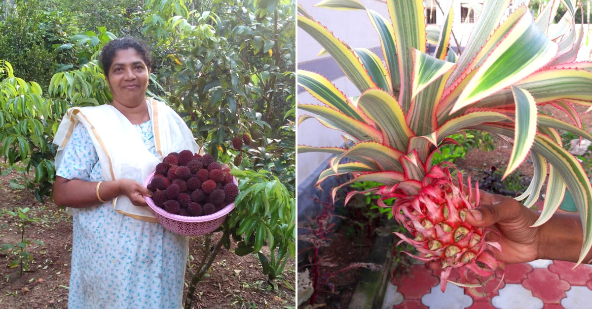 350 fruits & a Mother's legacy: The touching story of a