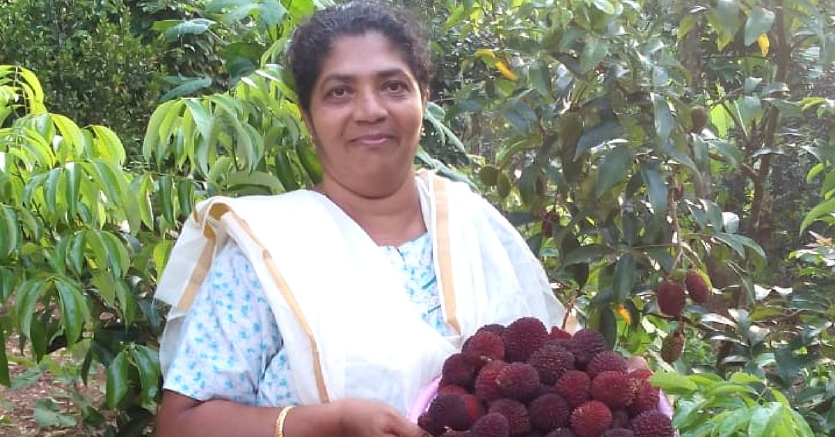 350 Fruits & a Mother's Legacy: The Touching Story of a Unique Kerala Farm!