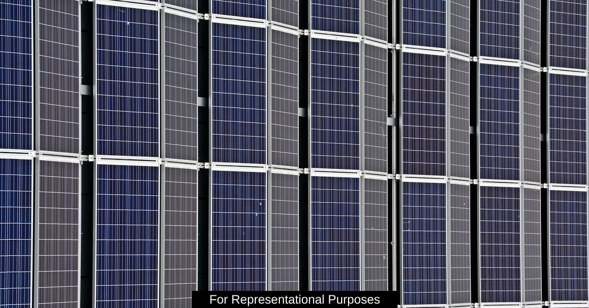 Indian Origin Scientist Develop Cheap Solar Cells Made Out Of Bacteria