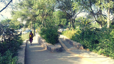 Gurugram biodiversity park (1)