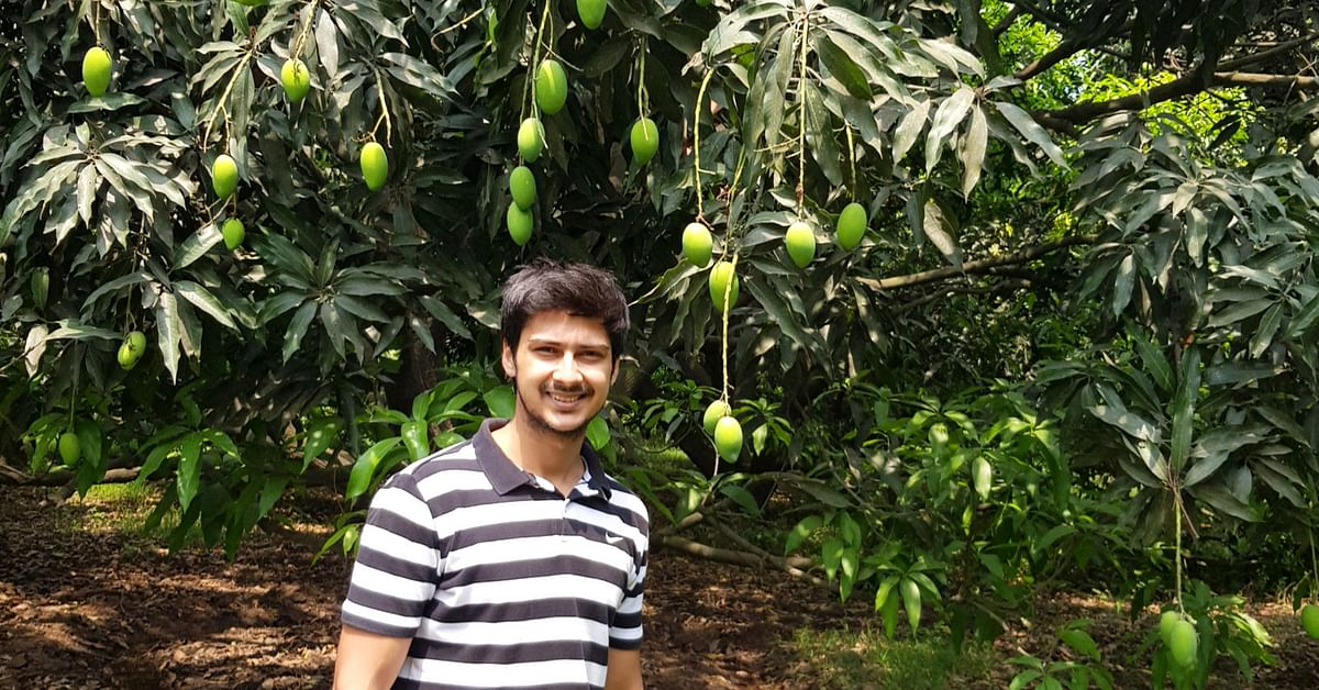 Earning in Lakhs, This 23-YO Engineer is UP's Sole Certified Organic Mango Farmer!
