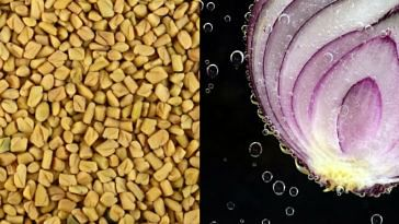 Fenugreek Seeds and onions can help diabetic heart