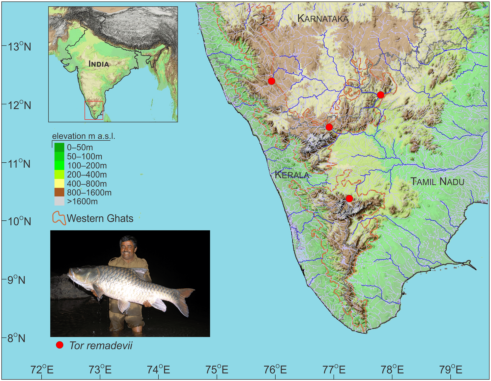 The Cauvery and its tributaries flow through the states of Karnataka, Kerala and Tamil Nadu.  Central Ground Water Board, India