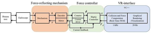 working of endomimyk flow chart