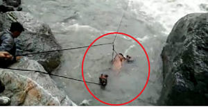 In Uttarakhand, officials rescued a horse that was being swept away in the Yamuna river. Photo Source