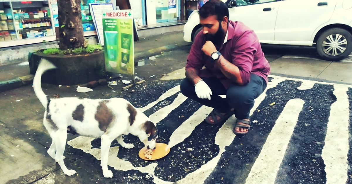 Rotighar for stray dogs