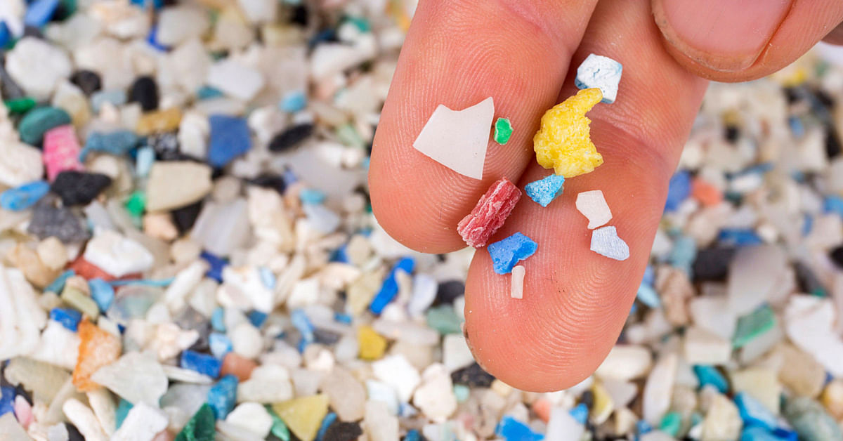 IIT B Finds Microplastic in Table Salt Brands: How Your Actions Can Reduce This Threat